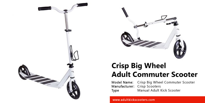Crisp Big Wheel Commuter Scooter Review