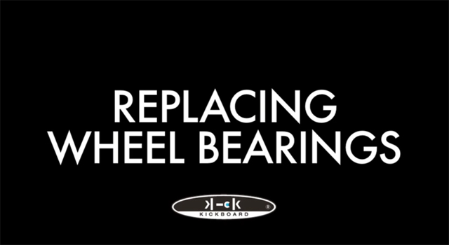 videos015_changingbearings_01