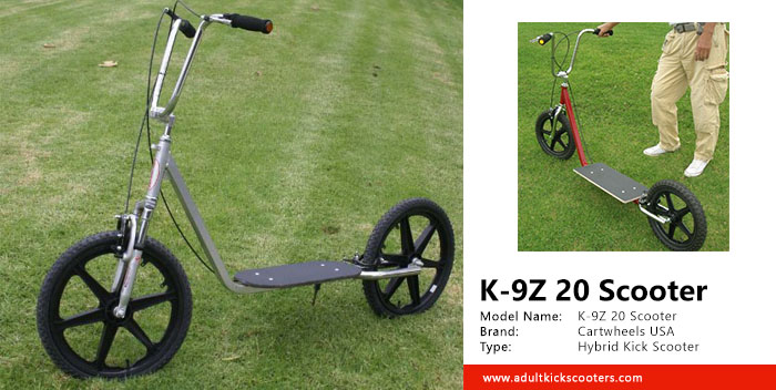 K-9Z 20 Scooter Review