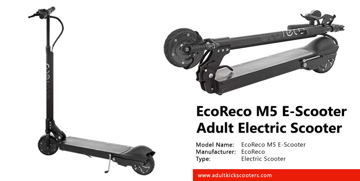 EcoReco M5 E-Scooter Electric Scooter Review